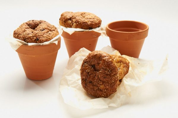 Bloempotje met muffin
